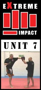 Extreme Impact 7