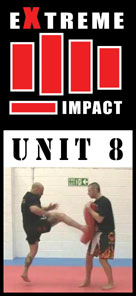 Extreme Impact 8