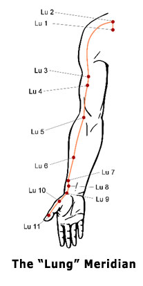 Pressure points a sceptical examination iain abernethy the meridians are associated with various organs and functions ie we have a stomach meridian a heart meridian a lung meridian and so on ccuart Images